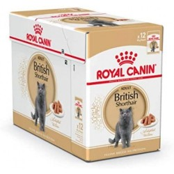 Royal Canin - Royal Canin British Shorthair