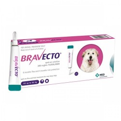Bravecto - Bravecto Spot On Dog (40-56 kg)