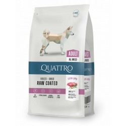 Quattro - Quattro Premium All Breed Adult Cu Carne De Miel