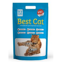 Fox - Silicat Best Cat