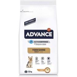 Advance - Advance Dog Yorkshire Terrier Hrana uscata pentru caini adulti din rasele Yorkshire & Terrier