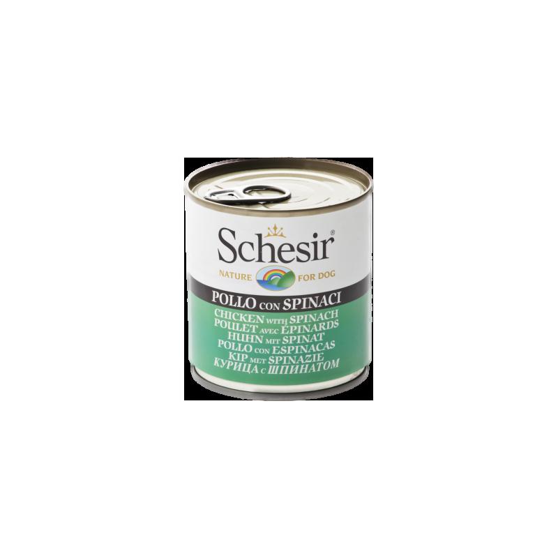 Schesir - Schesir cu pui si spanac