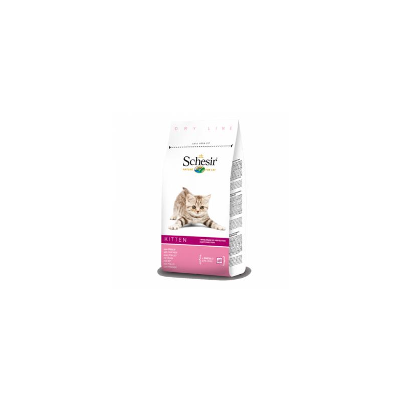 Schesir - Schesir Kitten