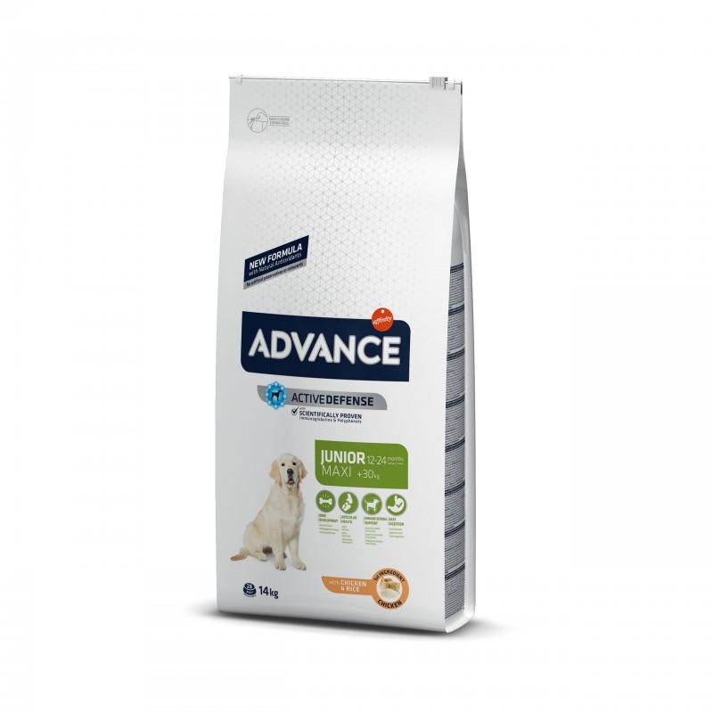 Advance - Advance Dog Maxi Junior