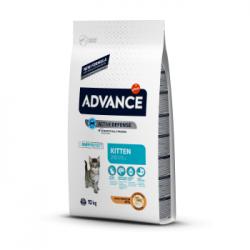 Advance - Advance Cat Kitten