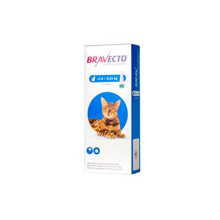 Bravecto - Bravecto Spot on Cat Antiparazitare impotriva puricilor si capuselor pentru pisici de talie medie