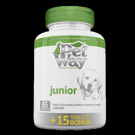petway - Petway Junior