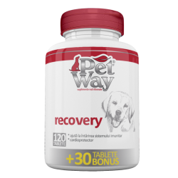 petway - Petway Recovery
